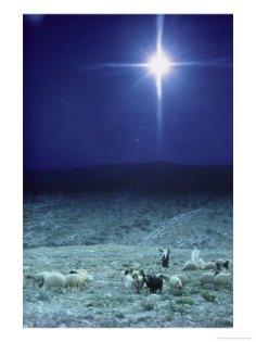 star-near-bethlehem-israel2