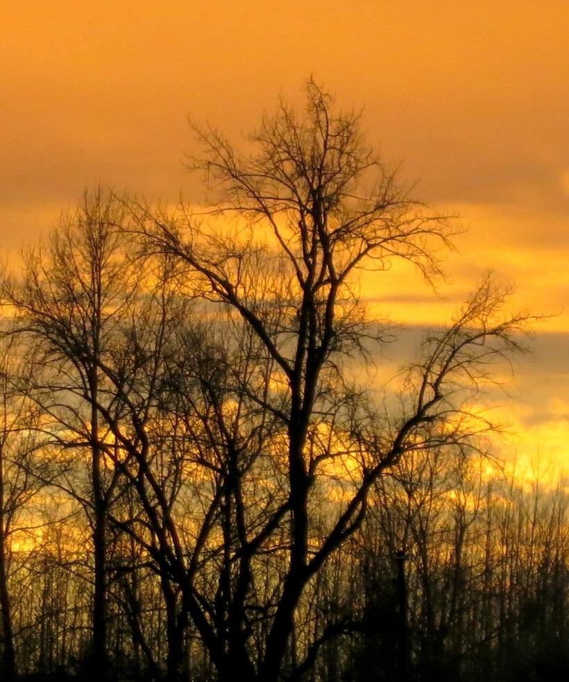 sunrise12173