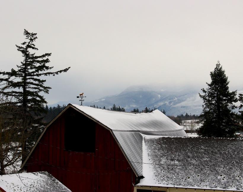 snowyfarm